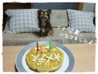 ツナ2歳の誕生日