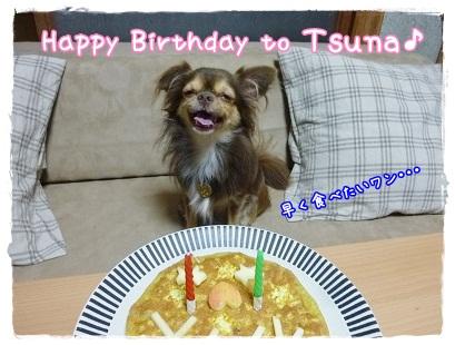 ツナの2歳の誕生日