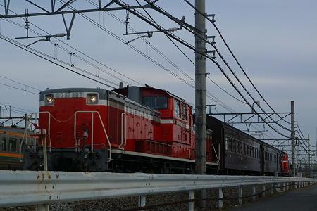 P1180203.jpg