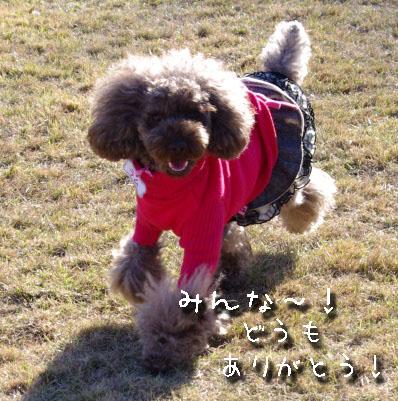 2010_1205k-x0255a.jpg