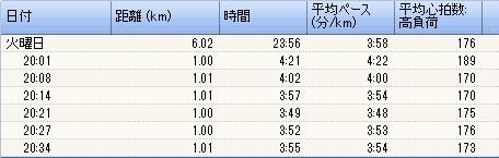 2009y12m09d_215425753.jpg