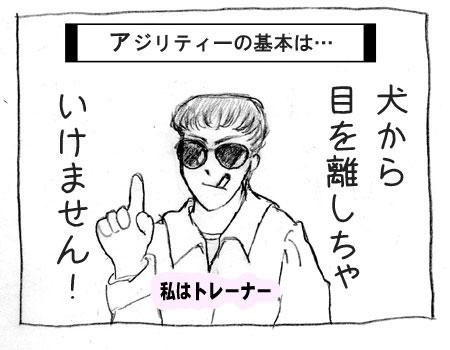 aac-1.jpg