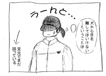aac-6.jpg