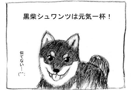syu-1.jpg