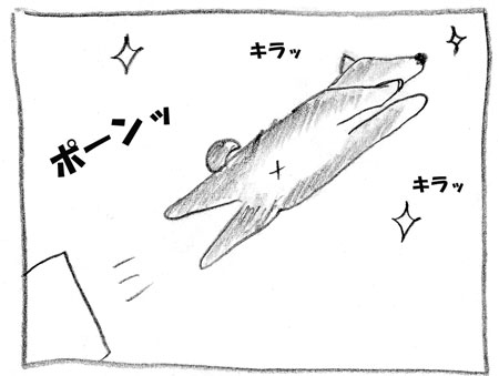 syu-6.jpg