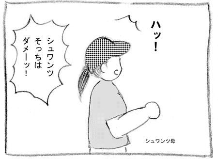 syu-9.jpg