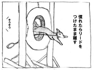 taiya-3-1.jpg