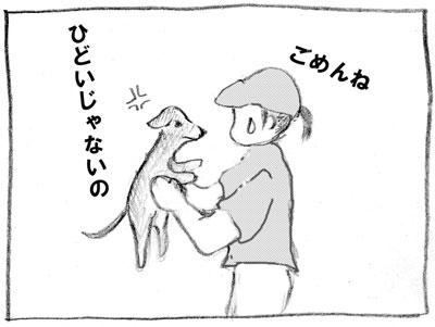 taiya-9.jpg