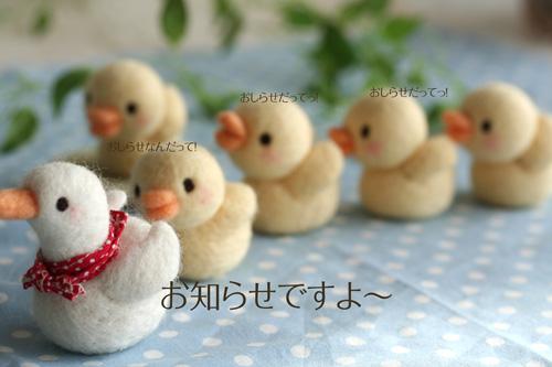 2010_0305_01.jpg