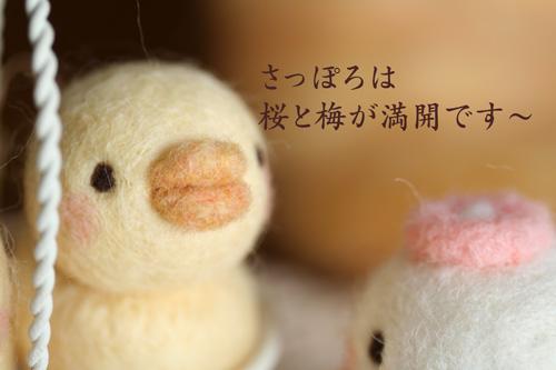 2010_0519_01.jpg