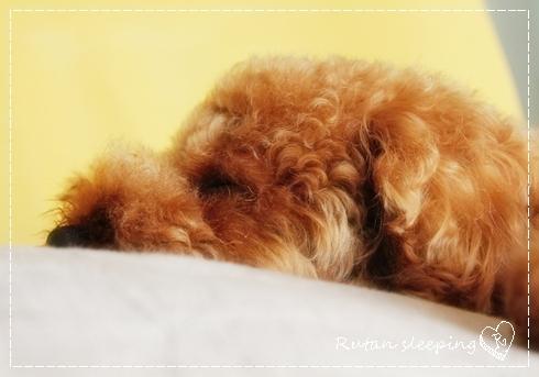 sleep ru