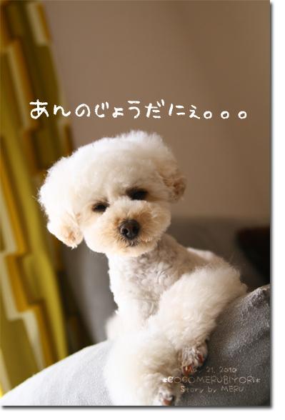 8_20100522132312.jpg