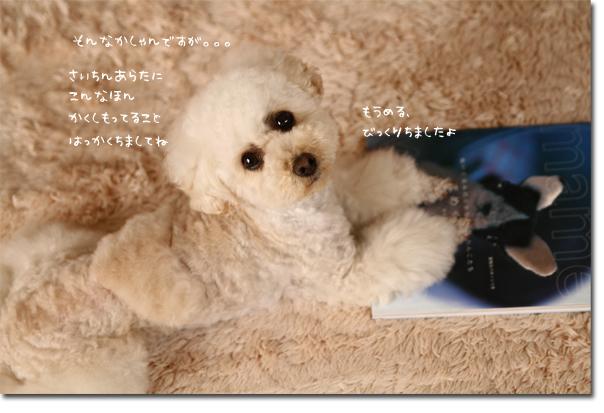 9_20100522132311.jpg