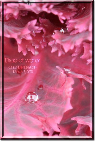 Drop-of-water2.jpg