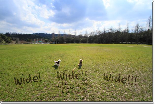 Wide!-wide!!-wide!!!.jpg