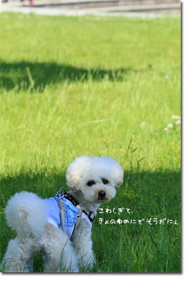 end_20100530191947.jpg