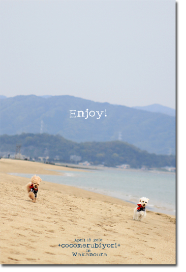 enjoy!.jpg