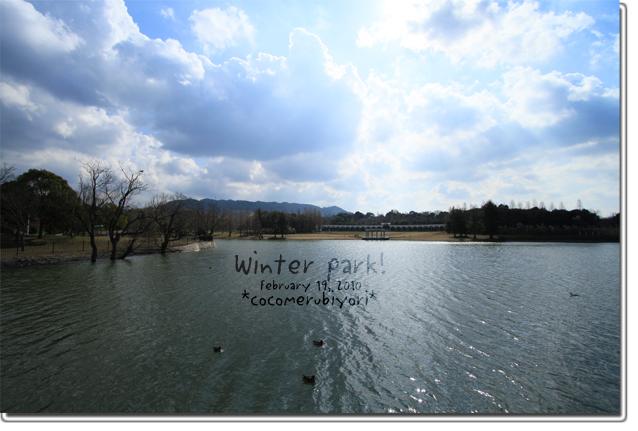 winter-park_20100220083357.jpg