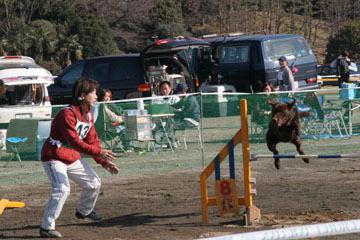 9・神奈川訓練士会06二月