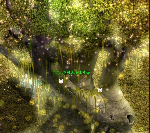 時の森(最深層)