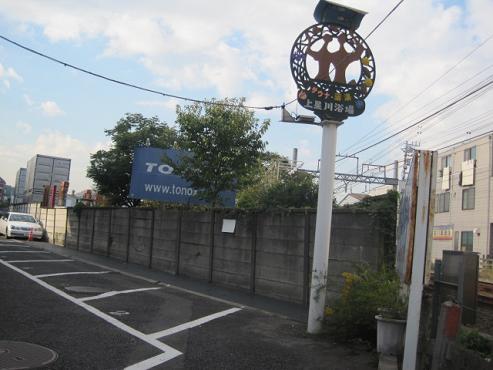 kamihoshi2.jpg