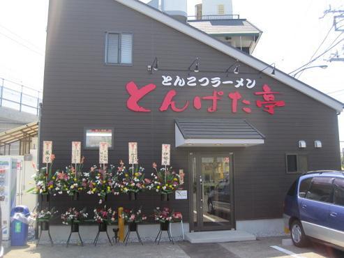 ton-san1.jpg