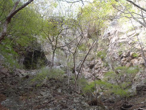 先住民窟ともぐらの穴