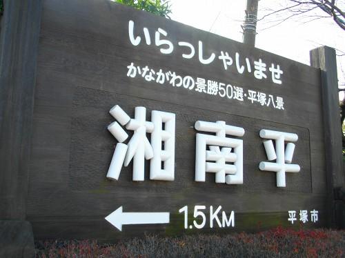 IMGP0242.jpg