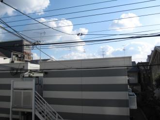 昭和町4丁目一戸建て 036