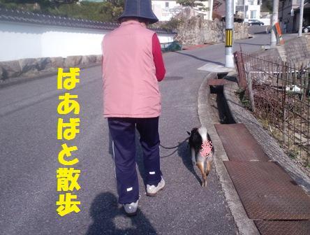 blog3207.jpg