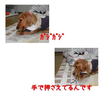 2009-11-19-02.jpg