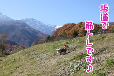 IMG_3724.jpg
