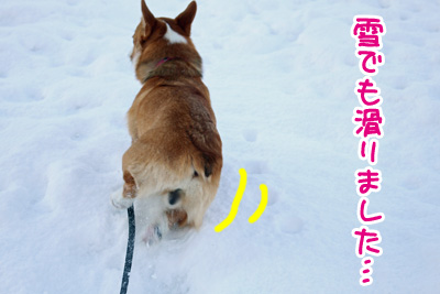 IMG_5414.jpg