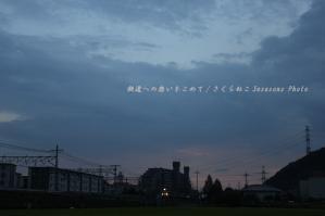 雷鳥宵闇島本p