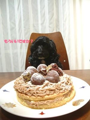 ケーキとsaku