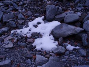 091108残雪