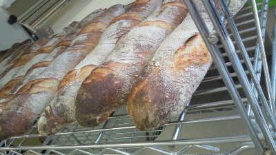 bread2010-9-7 007