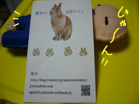 はしもにょ2009(1)