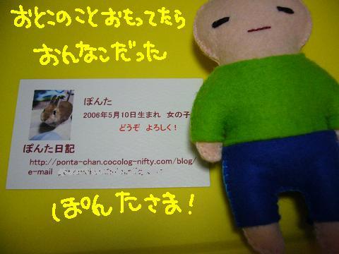 ぽんたうさフェス2009(1)