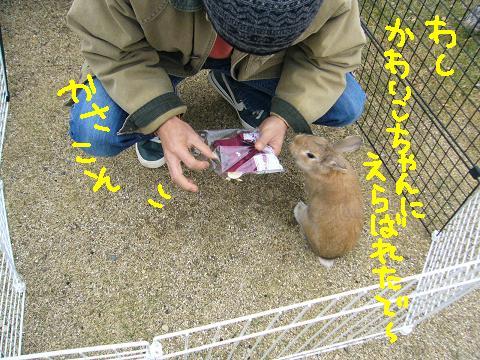 09うさんぽ会チャチャさま(3)