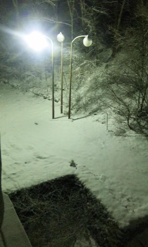 100112_雪