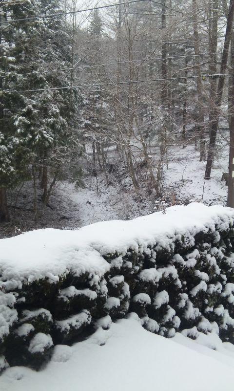 100112_雪.2