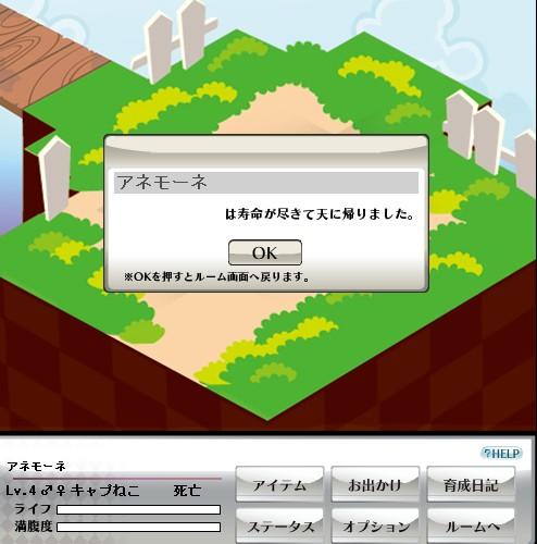 2010y03m30d_174058920.jpg