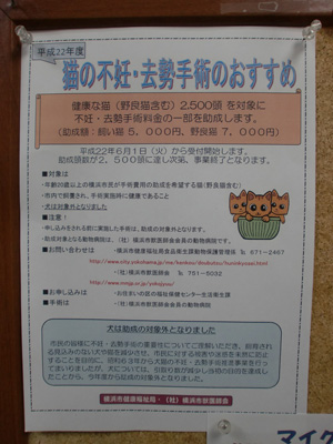 CIMG0619jyosei.jpg