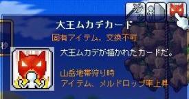 11月18日ー茶子vs大ムカデ2