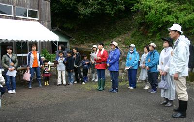 山茶摘み体験2011年110507b