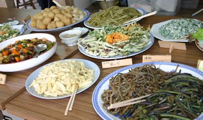 山茶摘み体験2011年110509a