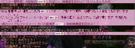 2010101202.jpg
