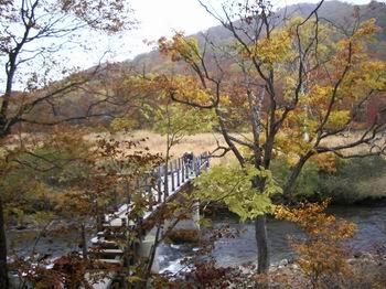 東電尾瀬橋5