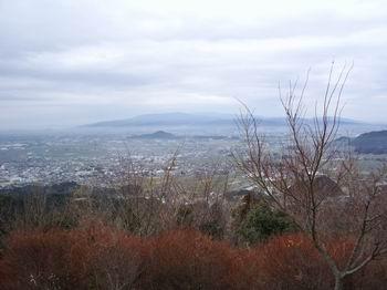 城山花立山9